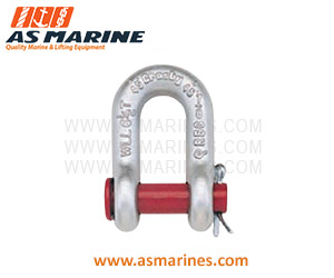 Jual-Shackle-Dee